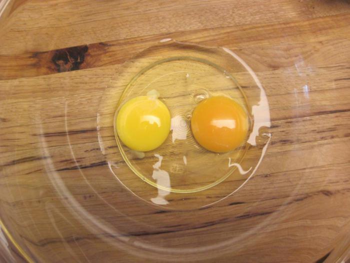 Какие яйца более полезные – белые или коричневые? Что лучше выбирать и покупать